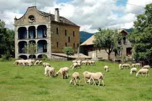 Maleta Rural